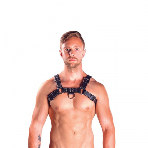 Mister B Leather Bulldog Harness Black